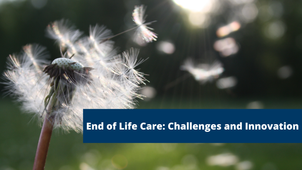"Dandelion blowing in the wind with text on top saying ""End of Life Care: Challenges and Innovation"""